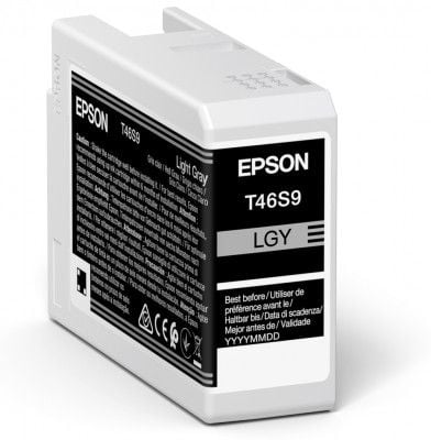 Epson Original T46S9 Light Grey Inkjet Cartridge C13T46S900